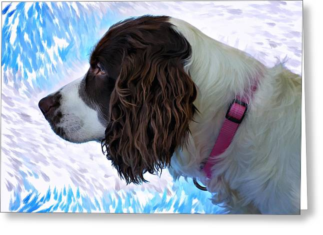 Spaniel Digital Art Greeting Cards - Kaya paint filter Greeting Card by Steve Harrington