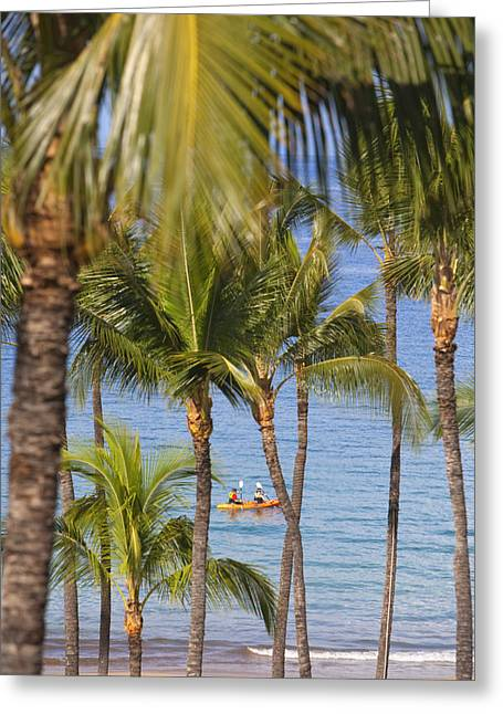 Athletic Photo Greeting Cards - Kayakers through Palms Greeting Card by Ron Dahlquist - Printscapes