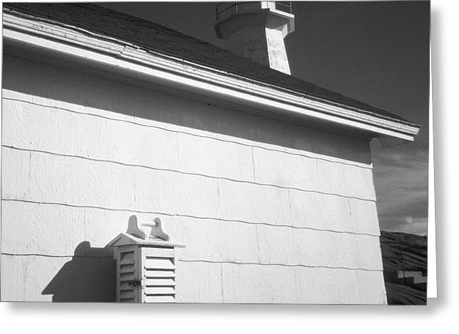 Clapboard House Greeting Cards - Keeping Watch Greeting Card by Gordon Wood