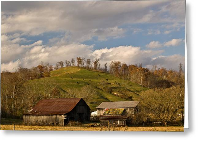 Shed Photographs Greeting Cards - Kentucky Mountain Farmland Greeting Card by Douglas Barnett
