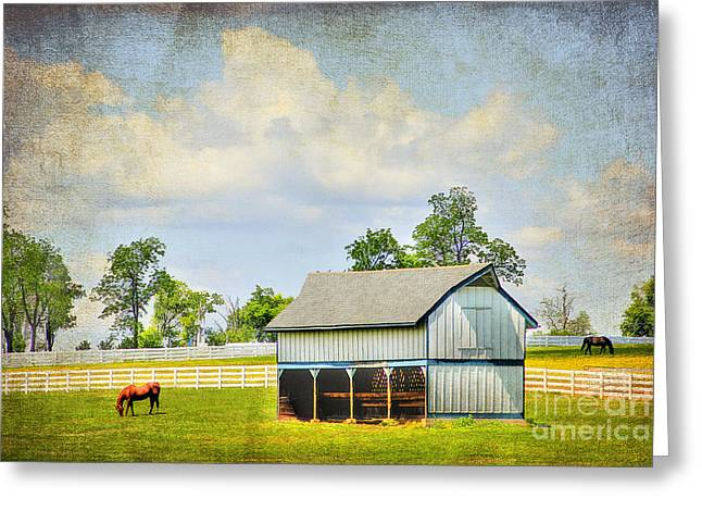 Ranch Digital Art Greeting Cards - Kentucky Pastures Greeting Card by Darren Fisher