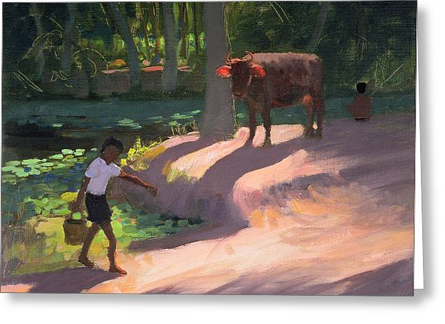 Cow Boy Greeting Cards - Kerala Backwaters Greeting Card by Andrew Macara