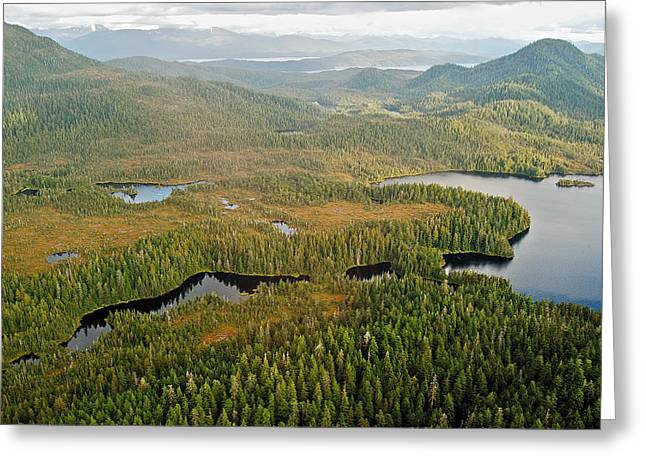 Ketchikan Greeting Cards - Ketchikan Misty Fiord 8995 Greeting Card by Michael Peychich