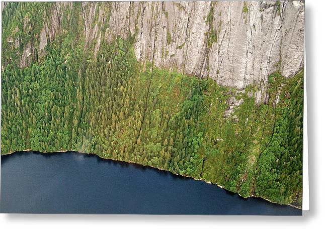 Arial Greeting Cards - Ketchikan Misty Fjord 8857 Greeting Card by Michael Peychich