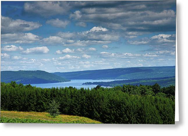 Pastoral Vineyard Greeting Cards - Keuka Landscape V Greeting Card by Steven Ainsworth