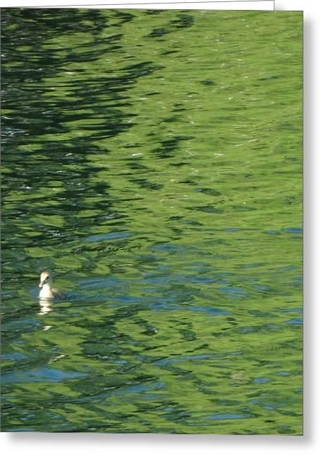 Lynnview Greeting Cards - Key Lime Ripples Greeting Card by Mark Lehar