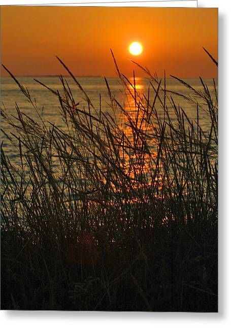 Susanne Van Hulst Greeting Cards - Key West Sunset Greeting Card by Susanne Van Hulst