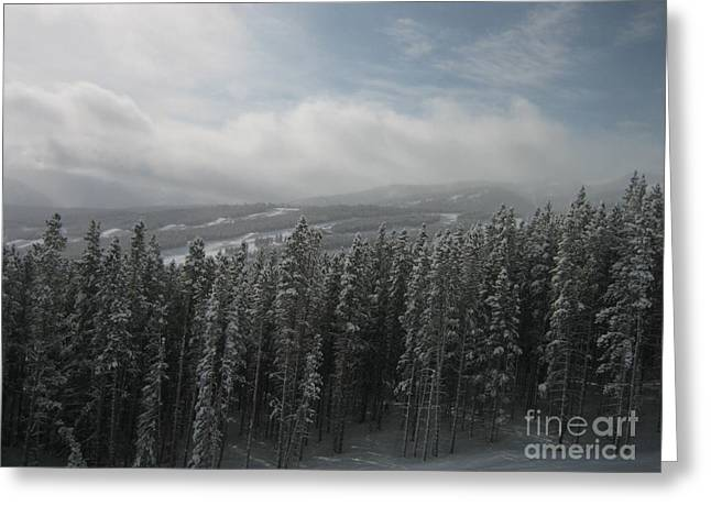 Gurney Greeting Cards - Keystone Greeting Card by Alexa Gurney