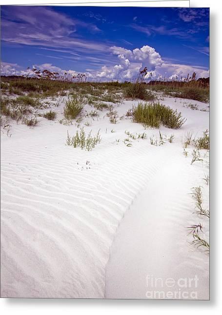 Cumulus Greeting Cards - Kiawah Island Beachwalker Greeting Card by Dustin K Ryan