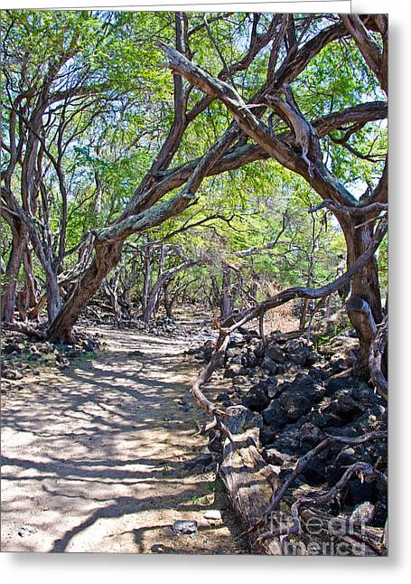 La Perouse Bay Greeting Cards - Kiawe Trees Greeting Card by Baywest Imaging
