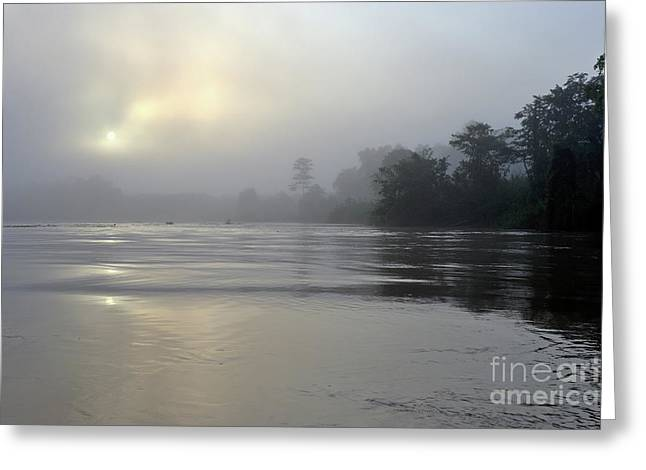 Reflections Of Trees In River Photographs Greeting Cards - Kinabatangan River at sunrise Greeting Card by Sami Sarkis