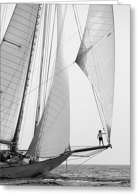 Reflex Greeting Cards - king of the world - a classic sailboat with all sails plying the sea on the island of Menorca Greeting Card by Pedro Cardona