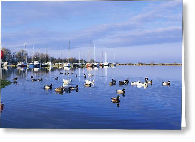 Neagh Greeting Cards - Kinnego Marina, Lough Neagh, Co Antrim Greeting Card by The Irish Image Collection