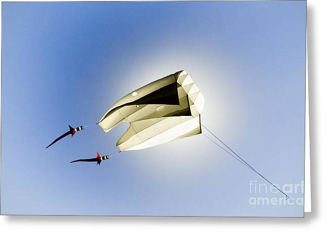 David Lade Greeting Cards - Kite and the sun Greeting Card by David Lade