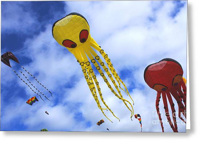 Kites Festival Greeting Cards - Go Fly A Kite 10 Greeting Card by Bob Christopher