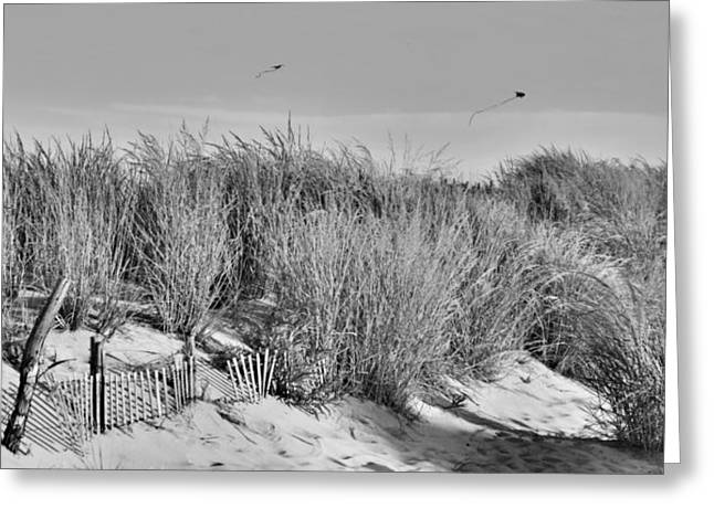 Kite Greeting Cards - Kites Over Dunes - Jersey Shore Greeting Card by Angie Tirado