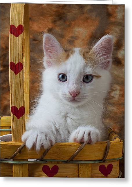 Pussy Greeting Cards - Kitten in basket with hearts Greeting Card by Garry Gay