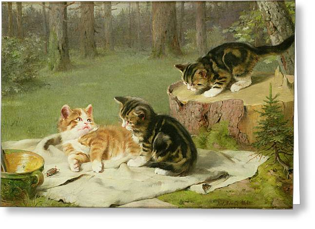 On Blanket Greeting Cards - Kittens Playing Greeting Card by Ewald Honnef
