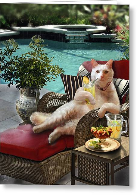 Humorous Greeting Cards Greeting Cards - Funny Pet  Vacationing Kitty Greeting Card by Gina Femrite
