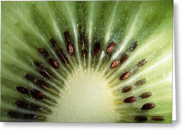 Kiwifruit Greeting Cards - Kiwi Slice Greeting Card by Vaughan Fleming