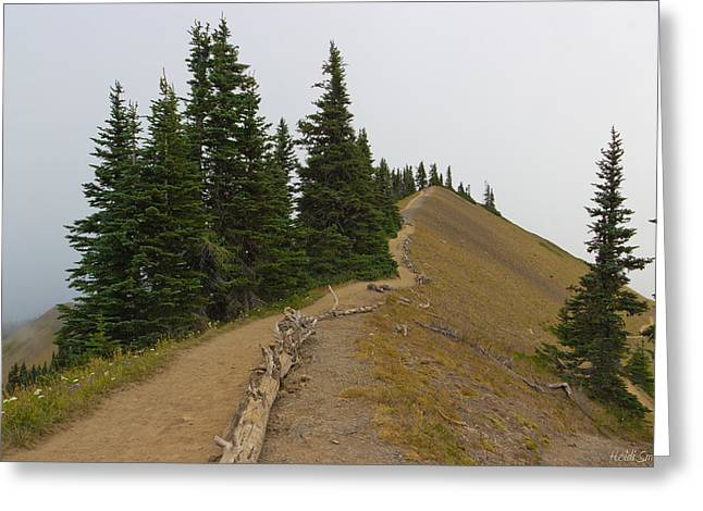Misty Pine Photography Greeting Cards - Klahane Ridge Switchback Trail Greeting Card by Heidi Smith