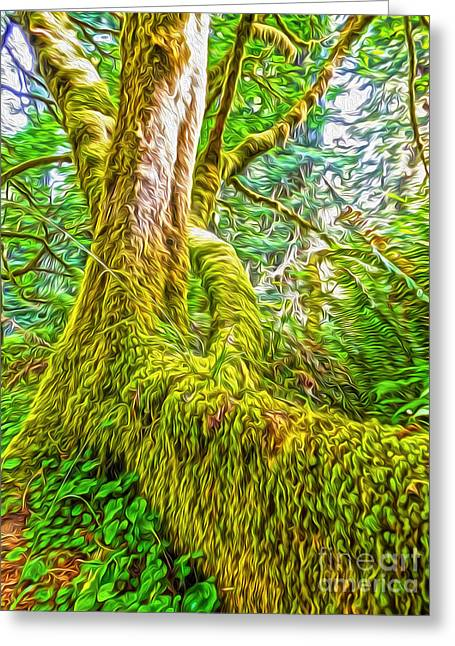 Gregory Dyer Greeting Cards - Klamath Moss Tree Greeting Card by Gregory Dyer