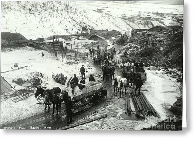 Klondike Gold Rush Greeting Cards - Klondike Gold Rush, 1898 Greeting Card by Photo Researchers
