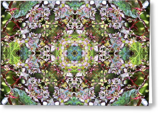 Symmetry Axis Greeting Cards - Knots IV Greeting Card by Kenneth Hadlock