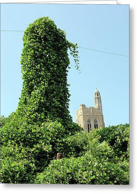 Green Day Greeting Cards - Knoxville Kudzu Greeting Card by Giffin Photography