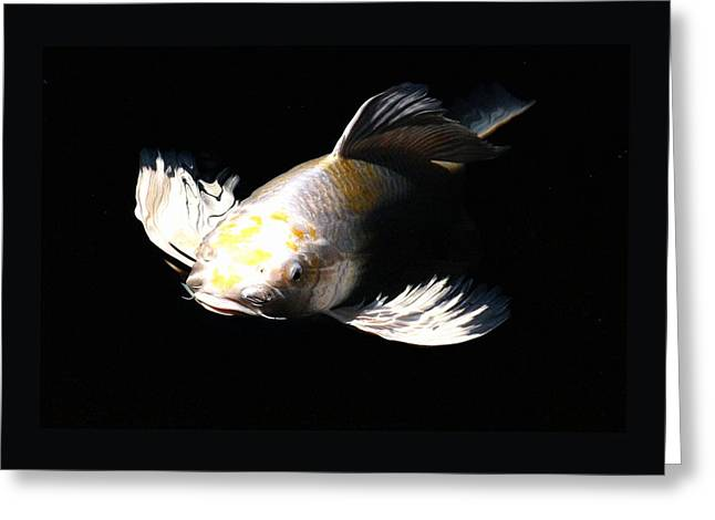Oranda Greeting Cards - Koi coming to the Light Greeting Card by Don Mann