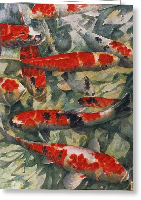 Goldfishes Greeting Cards - Koi Karp Greeting Card by Gareth Lloyd Ball