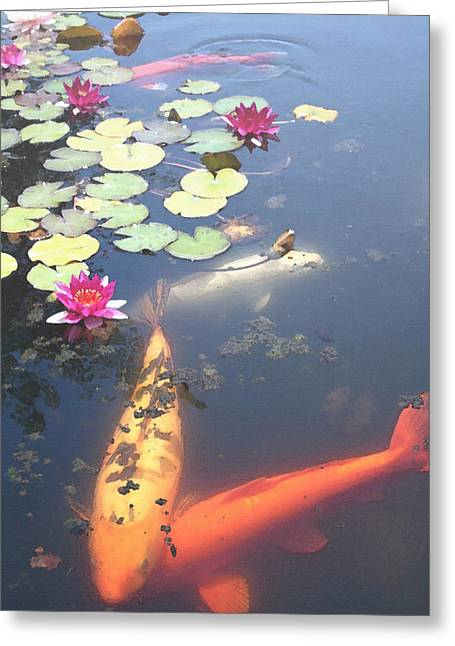 Steve Huang Greeting Cards - Koi Greeting Card by Steve Huang