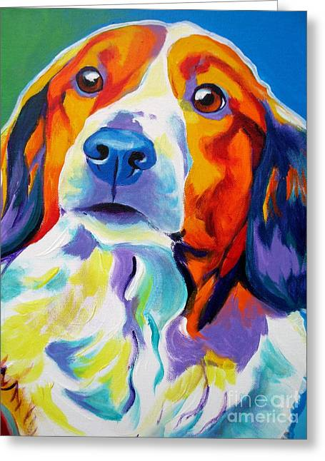 Kooiker Hound Greeting Cards - Kooiker - Dakota Greeting Card by Alicia VanNoy Call