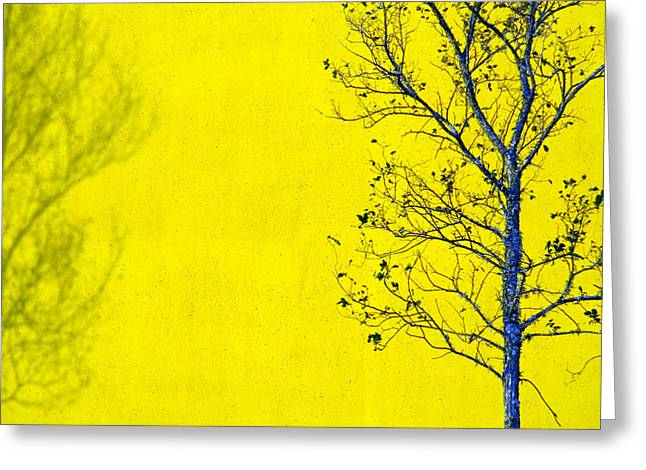 Abstract Tree Greeting Cards - Krishna Greeting Card by Skip Hunt