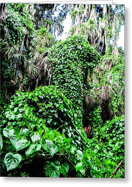 Kudzu Creature Greeting Card by Christy Usilton