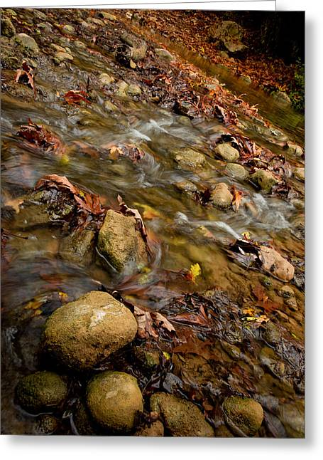 Fall Greeting Cards - Kziv Stream Greeting Card by Nadya Ost