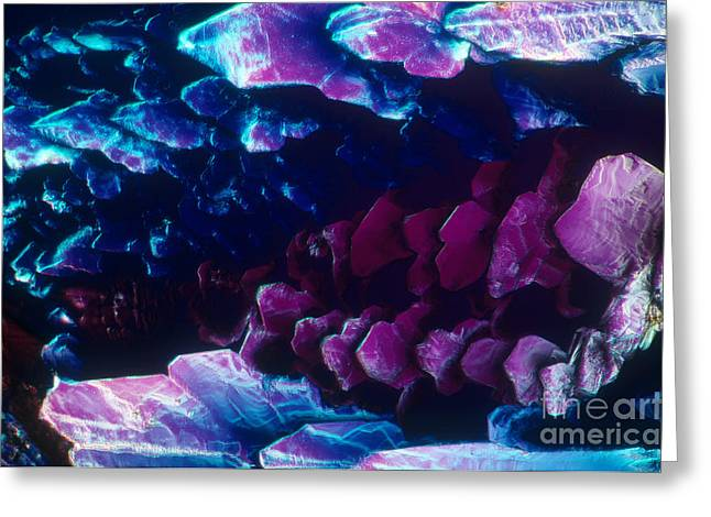 L. Histidine Crystals Greeting Card by M. I. Walker