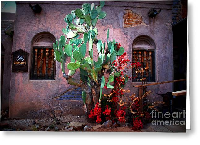 La Hacienda in Old Tuscon AZ Greeting Card by Susanne Van Hulst
