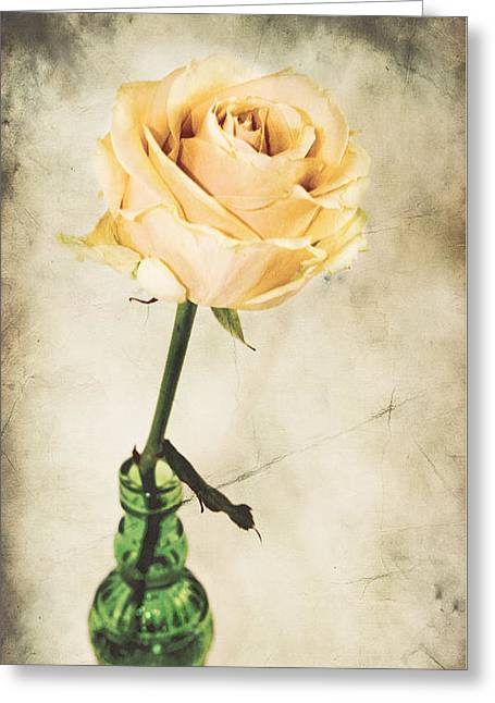 La Rose Greeting Card by Angela Doelling AD DESIGN Photo and PhotoArt