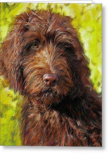 Lab Mix Greeting Cards - Labradoodle Greeting Card by Jane Schnetlage