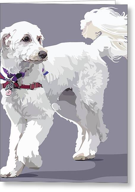 Labradoodle Greeting Cards - Labradoodle on a Lead Greeting Card by Kris Hackleman