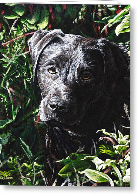 Black Labrador Retreiver Greeting Cards - Labradorable Greeting Card by Cara Bevan
