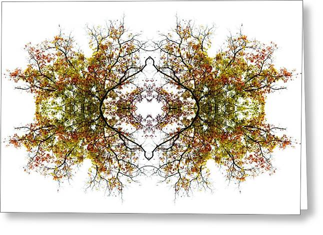 Lacy Abstract Greeting Cards - Lace Greeting Card by Debra and Dave Vanderlaan
