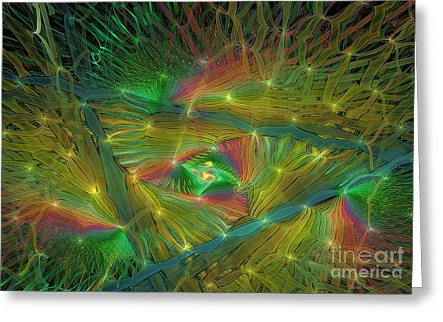 Lacy Fractal Greeting Cards - Lacy Rainbow Triangle Greeting Card by Deborah Benoit