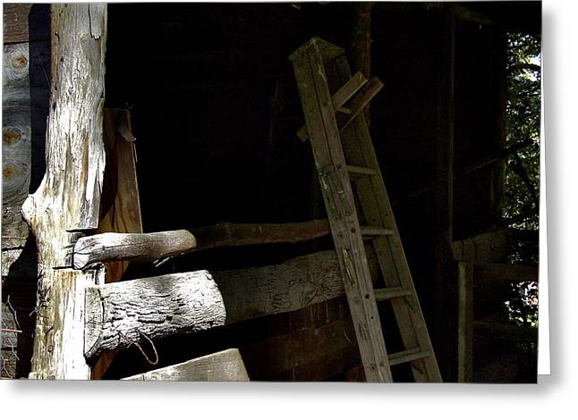 Franklin Farm Greeting Cards - Ladder In The Shadow Greeting Card by Richard Gregurich