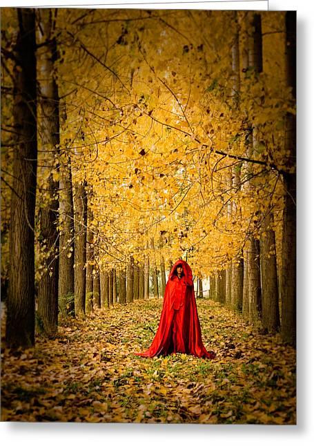 Lady In Red - 5 Greeting Card by Okan YILMAZ