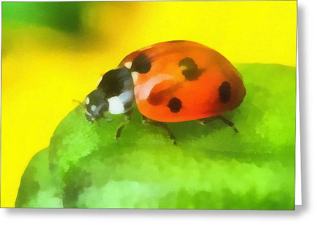 Sea Birds Greeting Cards - Ladybird Greeting Card by Odon Czintos