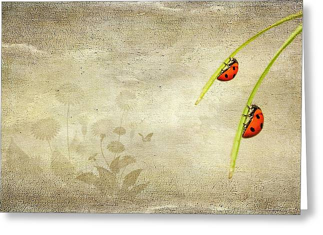 Isolated Mixed Media Greeting Cards - Ladybirds Greeting Card by Svetlana Sewell