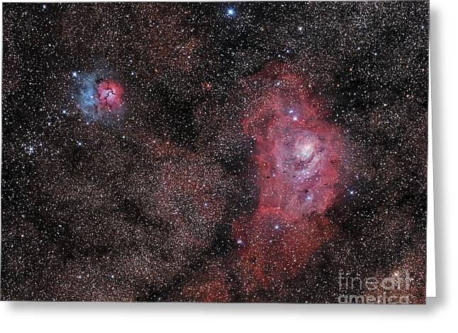 Starforming Greeting Cards - Lagoon Nebula And Trifid Nebula Greeting Card by Philip Hart