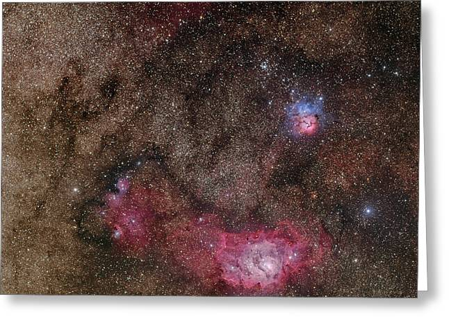 Starforming Greeting Cards - Lagoon Nebula And Trifid Nebula Greeting Card by Phillip Jones